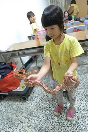 英文課+動物課玉米蛇+刺蝟+Updownaround學習單 057-1