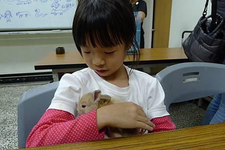 動物課兔子+紫蛇目寄生+麵包蟲繭 020