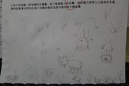 守宮兔子學習單+紫蛇目蝶蛹 005
