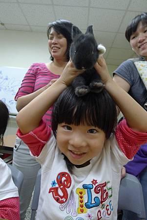 動物課兔子+紫蛇目寄生+麵包蟲繭 066-1