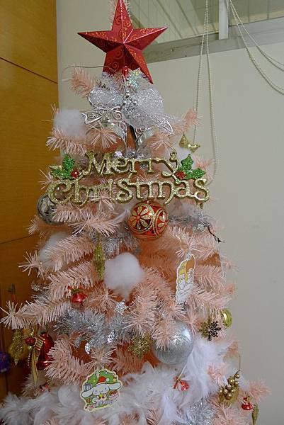 科學課+蚯蚓+聖誕節掛飾+麝香豬 348