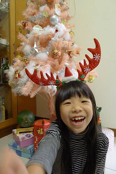 科學課+蚯蚓+聖誕節掛飾+麝香豬 356