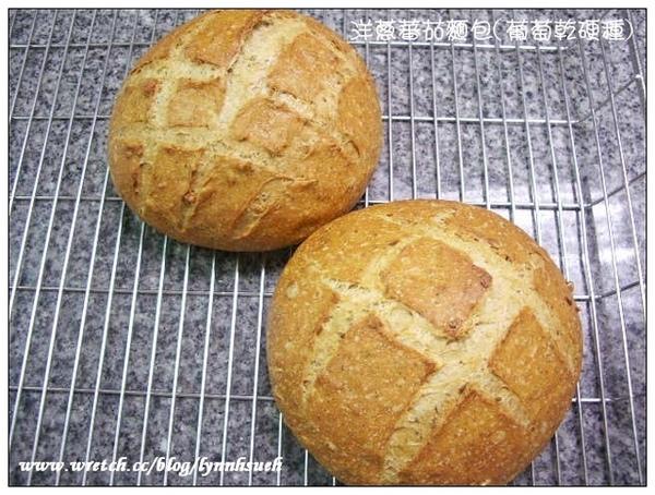 洋蔥蕃茄麵包(葡萄乾硬種)