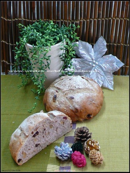 96.12.08蒲老師-酸老麵桂圓裸麥麵包