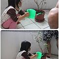 IMG_7585-vert.jpg