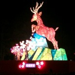 2014 愛妳一生一世 台灣燈會在南投