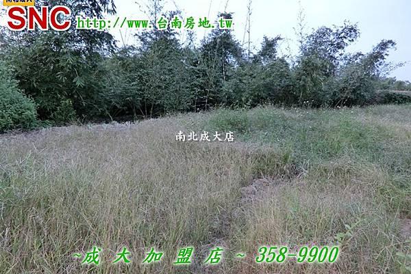 CIMG0142