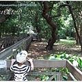 小猴子9.JPG