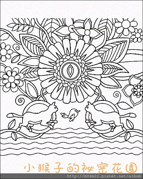 Colorfy4.jpg