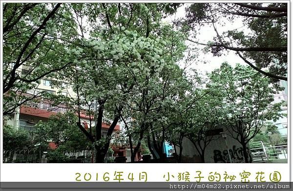 P_20160412_091511_NT.jpg