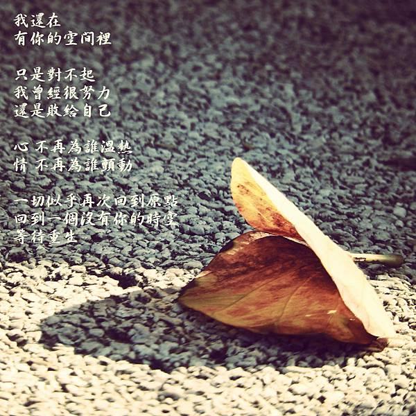 DSCN4586_meitu_1.jpg
