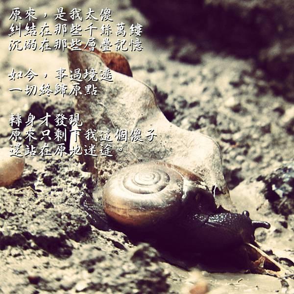 DSCN6789_meitu_3.jpg