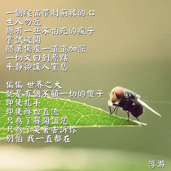 DSCN3854_meitu_4.jpg