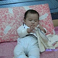 2008-12-12小猴子 008.JPG
