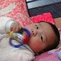 2008-12-12小猴子 017.JPG