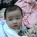 2009-01-09七個月小猴子 004.JPG