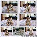 11個月小猴子7.jpg