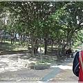 朝陽森林公園10.JPG