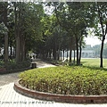 朝陽森林公園4.JPG