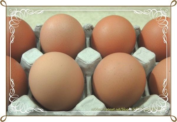 豐鮮蛋1.jpg