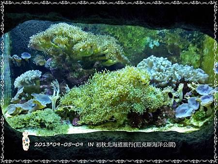 20130908_085257