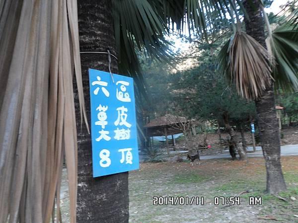 台中谷關溫泉賽德克公主露營區-歡迎您