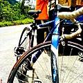 單車上路的單車.jpg