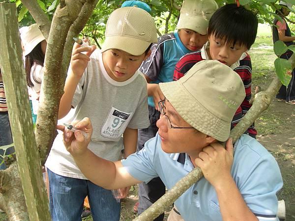 15童話村的幫桑椹打針治病活動.不止小孩喜歡玩,就連大人都玩得不亦樂呼