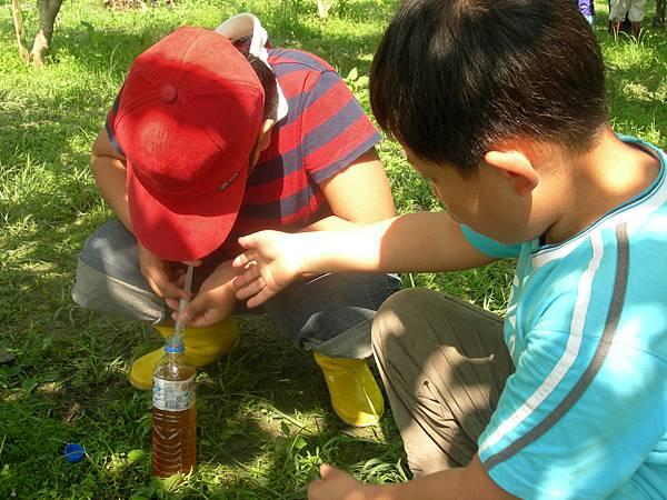 16亦可訓練小孩獨力完成一件事,讓小孩有成就感及獨立感可以訓練耐性的抽辣椒水體驗