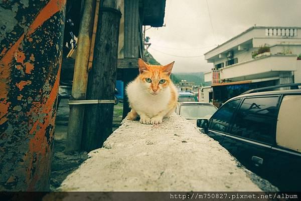 蘭嶼 嵐羽_170530_0040.jpg