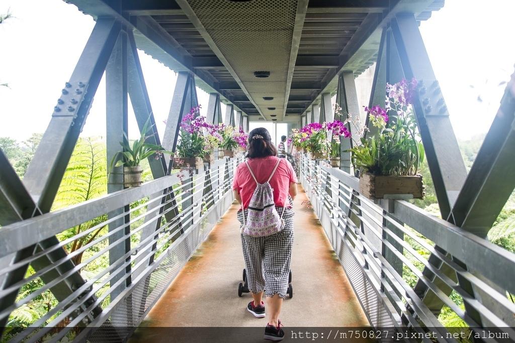 沖繩_180925_0097.jpg