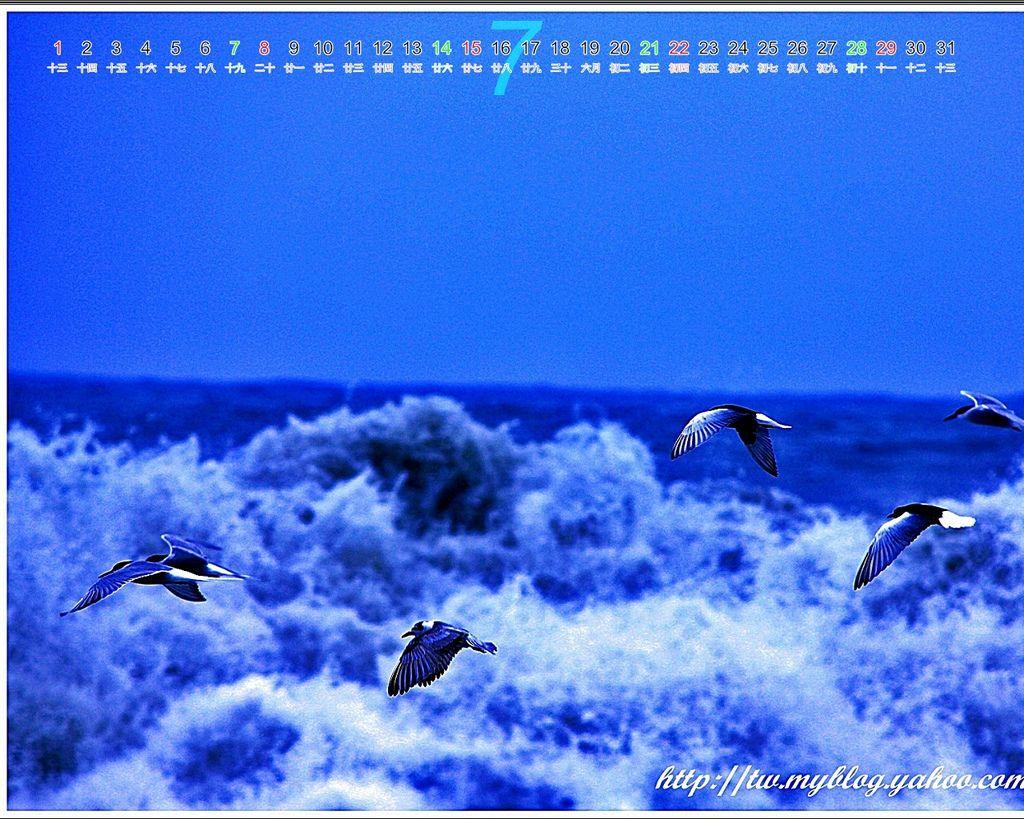 2012七星潭08.jpg