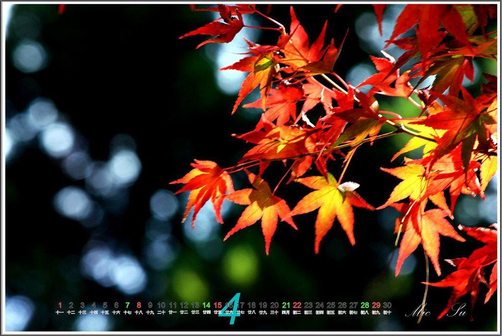 福壽山2012月曆05.jpg
