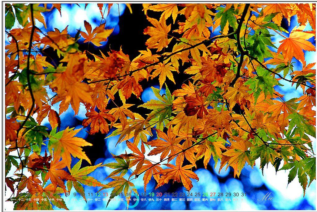 福壽山2012月曆06.jpg
