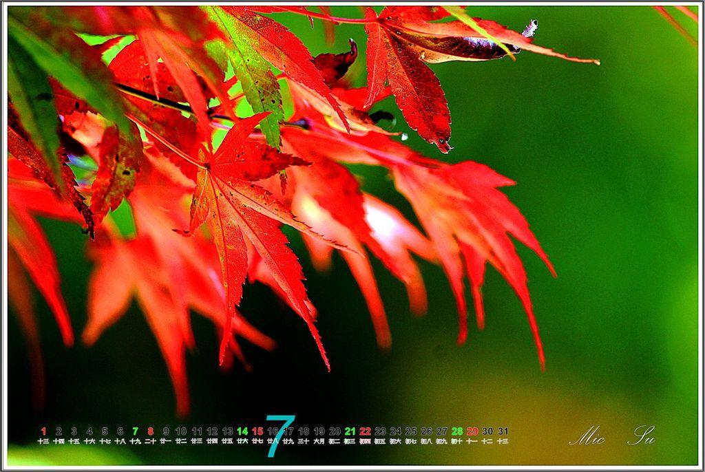福壽山2012月曆08.jpg