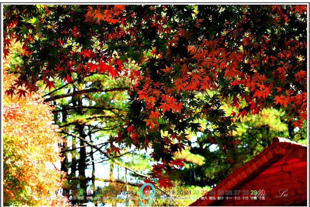 福壽山2012月曆10.jpg