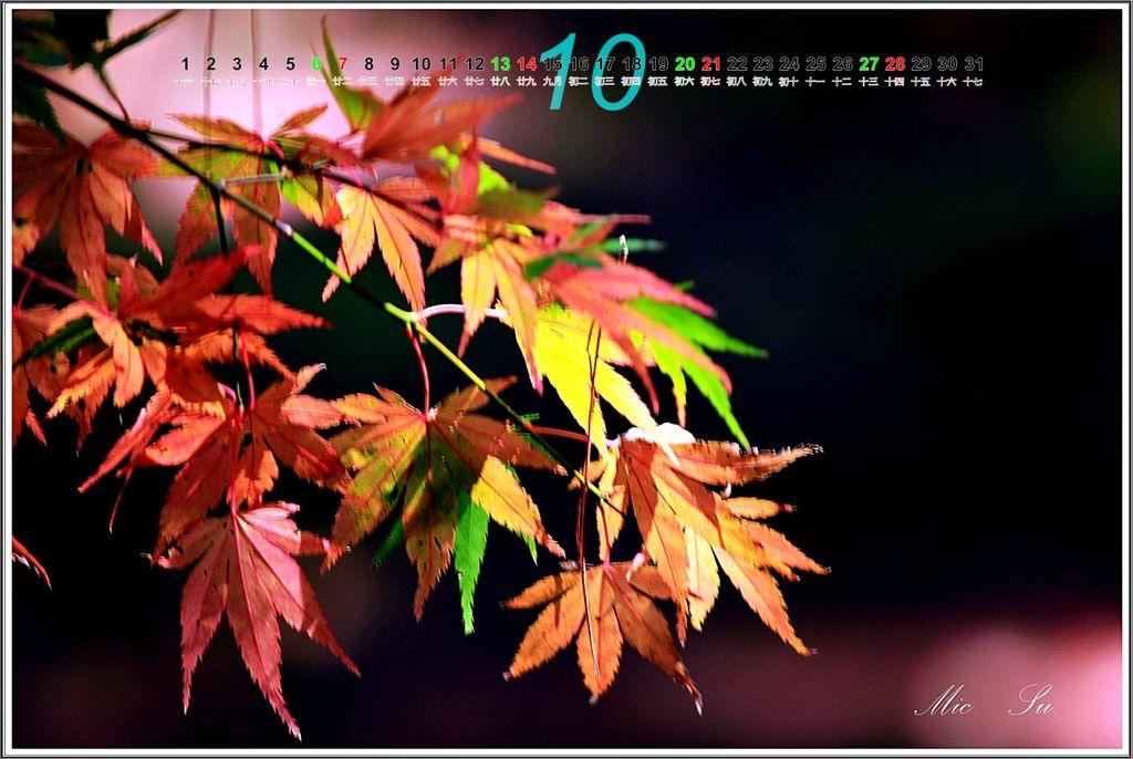 福壽山2012月曆11.jpg