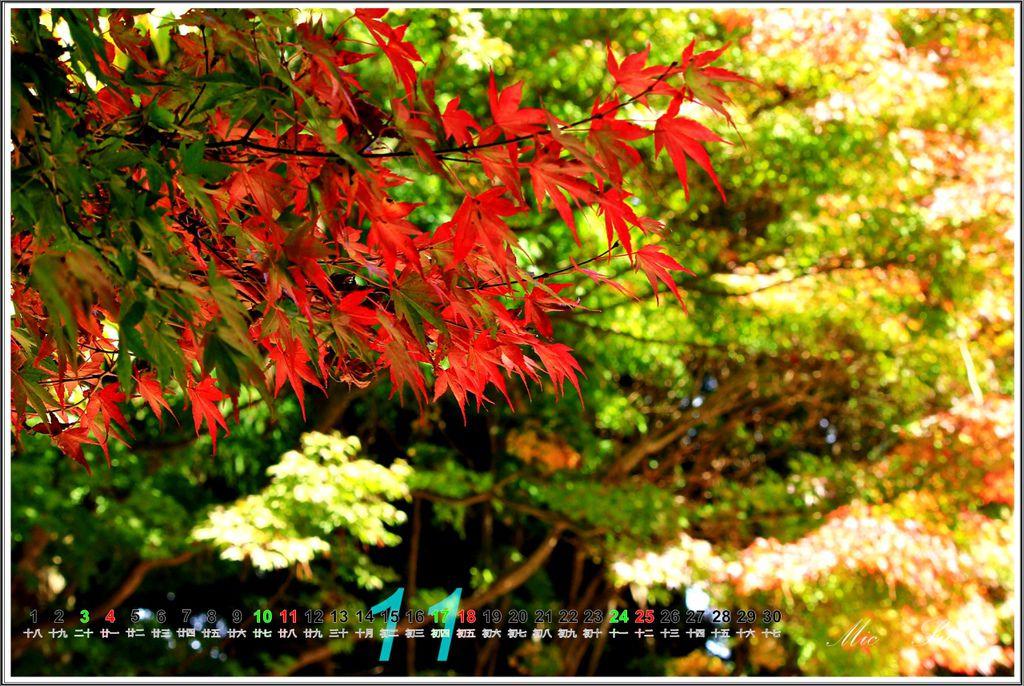 福壽山2012月曆12.jpg