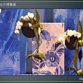 Taipei-flower-28.JPG