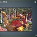 Taipei-flower-14.JPG