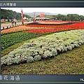 Taipei-flower-04.JPG
