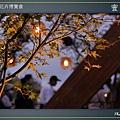 Taipei-flower-15.JPG