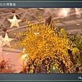 Taipei-flower-23.JPG