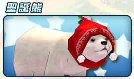 [寵物] 聖誕熊
