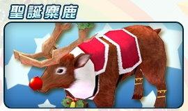 [寵物] 聖誕麋鹿
