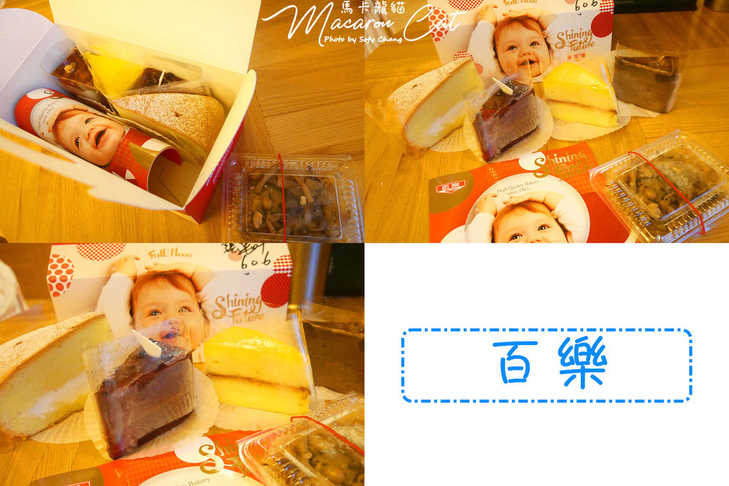 Blog_P1380185P01.jpg