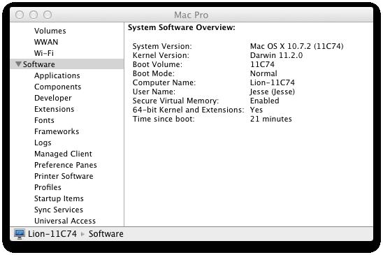 Lion-10.7.2-11C74.png