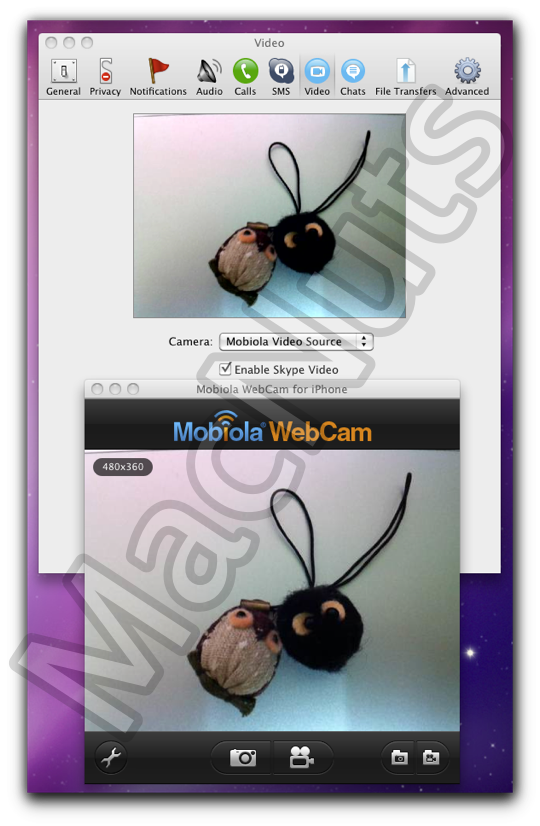 Skype with WebCamera.png