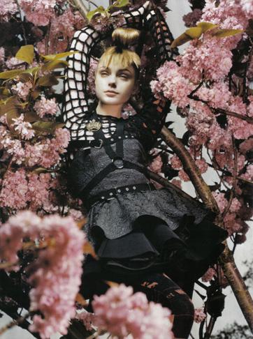 78091_the_enchanted_garden_325_122_598lo.jpg