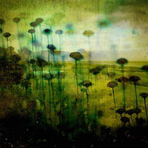 flickr Nami(73。)拷貝.jpg